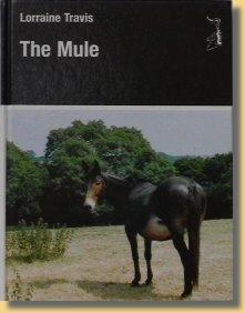the mule by lorraine travis
